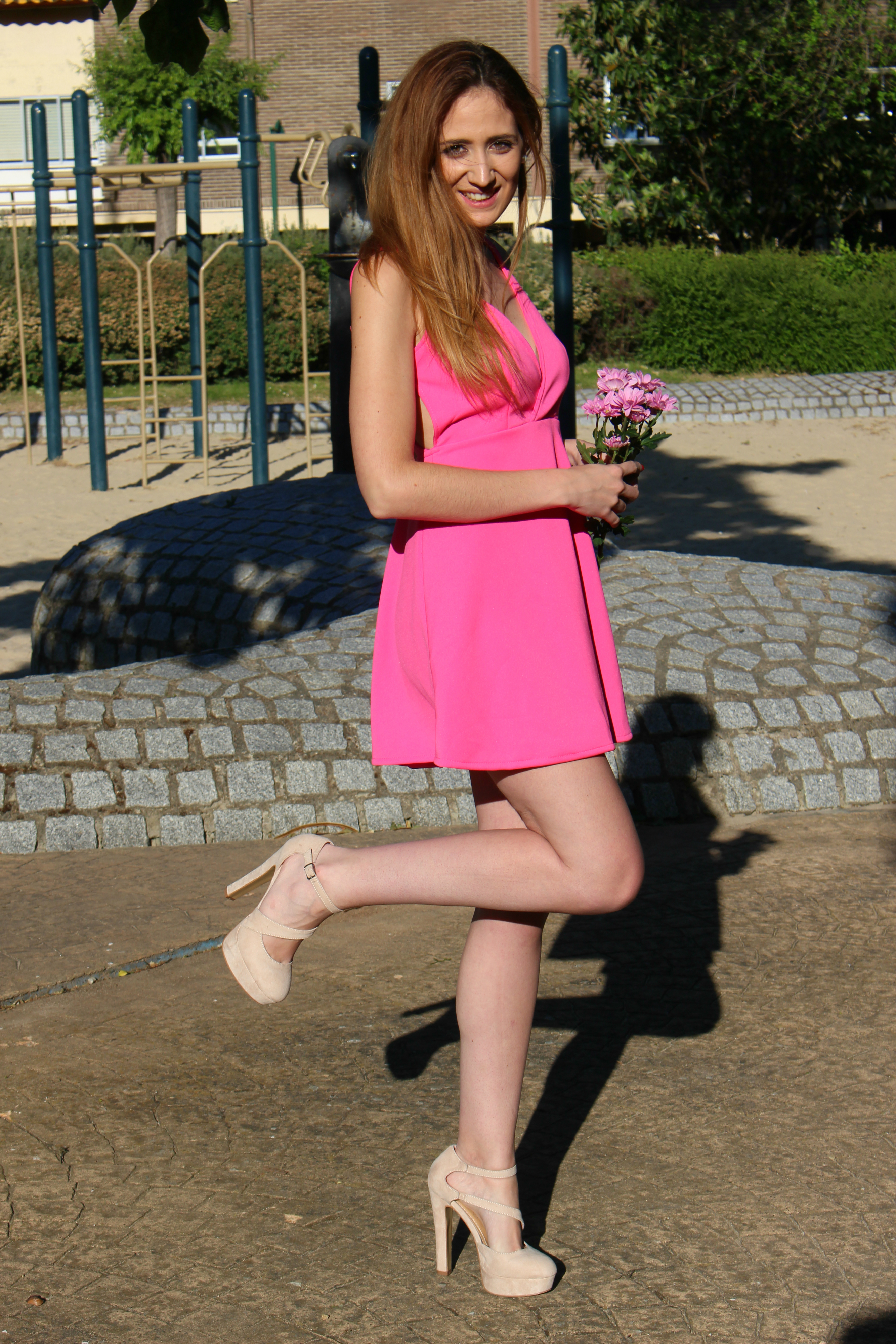 Rosa y margaritas 6