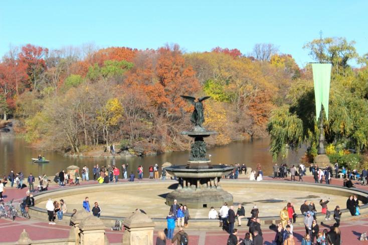 Central Park y Empire State|Día 6 NY 5