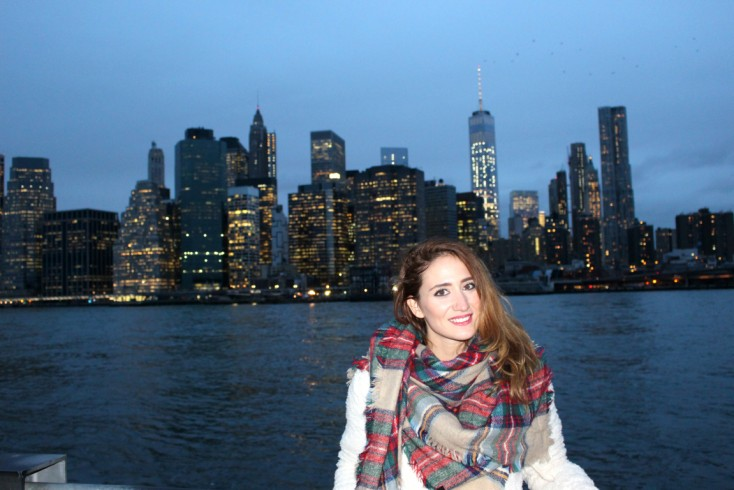 Brooklyn y Wall Street  | Días 3 y 4 NY